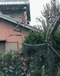 「雪降ってるー!」01/28(日) 15:17 | かえらの写メ・風俗動画