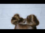 「一卵性双子「姉 はむ」ちゃん」02/19(月) 17:45 | 双子はむの写メ・風俗動画