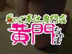 「かずはちゃん-黄門ちゃま」03/01(木) 17:59 | 和葉(かずは)の写メ・風俗動画