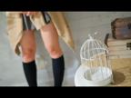 「業界未経験!風俗とは無縁っぽい完全素人ちゃんが入店です!」04/24(火) 04:20   さえなの写メ・風俗動画