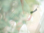 「美巨乳!鉄板美熟女の悶絶遊戯『鮎川さん』」05/25(金) 12:38 | 鮎川の写メ・風俗動画
