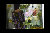 「【即ヤリ】or【濃厚 逆夜這い】 ★白井ゆり★」09/24(月) 23:46 | 白井ゆりの写メ・風俗動画