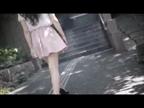 「清楚純真そのもの☆見た目もスタイルも最高級お姉様」08/28(08/28) 20:12 | 真美花(まみか)の写メ・風俗動画