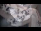 「しっとり艶やかな色気の大人の女性☆当店屈指の本指名率!」09/09(09/09) 17:21 | 奈美(なみ)の写メ・風俗動画