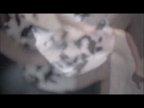 「しっとり艶やかな色気の大人の女性☆当店屈指の本指名率!!」09/11(09/11) 19:41 | 奈美(なみ)の写メ・風俗動画