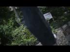「煌く美貌に最高に磨かれた抜群のスタイル!!」09/26(09/26) 19:50 | 美緒(みお)の写メ・風俗動画