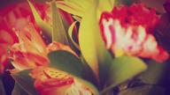 「やりすぎサークル新宿大久保店」11/05(火) 07:20 | 風神コースの写メ・風俗動画