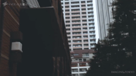 「水崎 莉央香(みずさき りおか)のアナザムービー CM編」06/01(06/01) 13:00 | 水崎莉央香の写メ・風俗動画