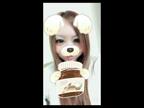 「来ましたよーっ(^ ^)  地元の女の子☆れおちゃん☆」11/21(火) 12:11   れおの写メ・風俗動画