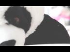 「汚れを知らない王道美少女!!抜群の透明感!!」09/16(金) 14:54 | 今宮 ほたるの写メ・風俗動画